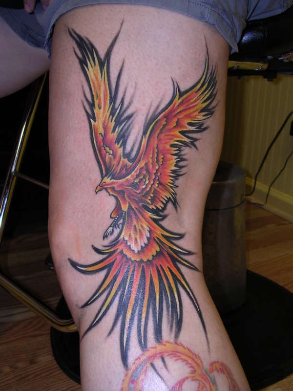 flame phoenix tattoo. Black Bedroom Furniture Sets. Home Design Ideas