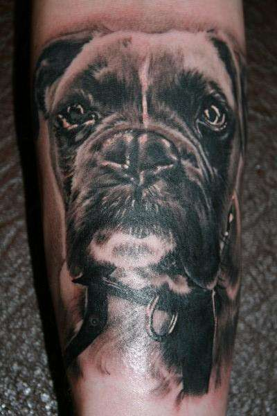 Boxer Portrait tattoo