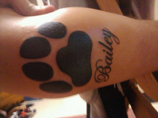Tattoo For my Dog Bailey who died December 26th, 2008 tattoo