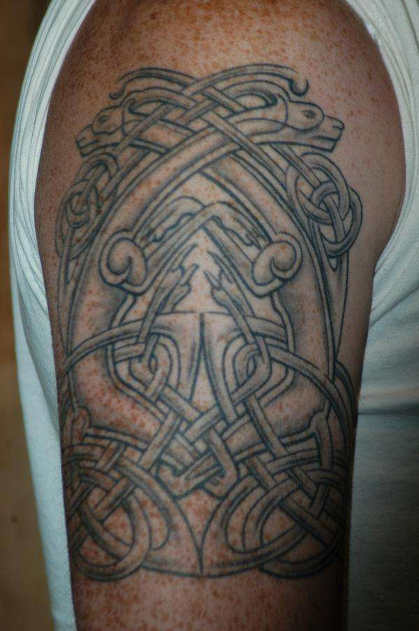 celtic dogs tattoo
