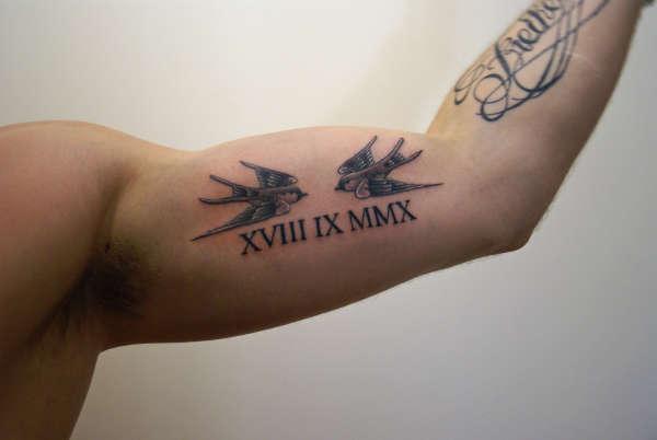 Swallows roman numerals tattoo - Tatouage veni vidi vici ...