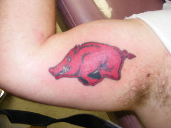 arkansas razorback tattoo