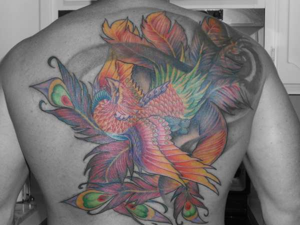 Phoenix color wash tattoo for Best soap to clean tattoo
