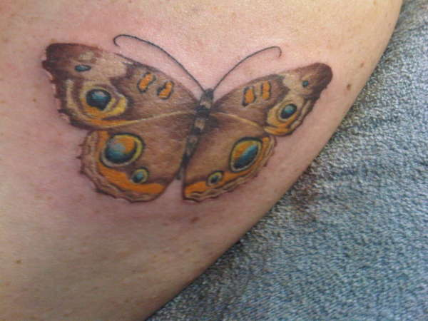 2nd butterfly tattoo