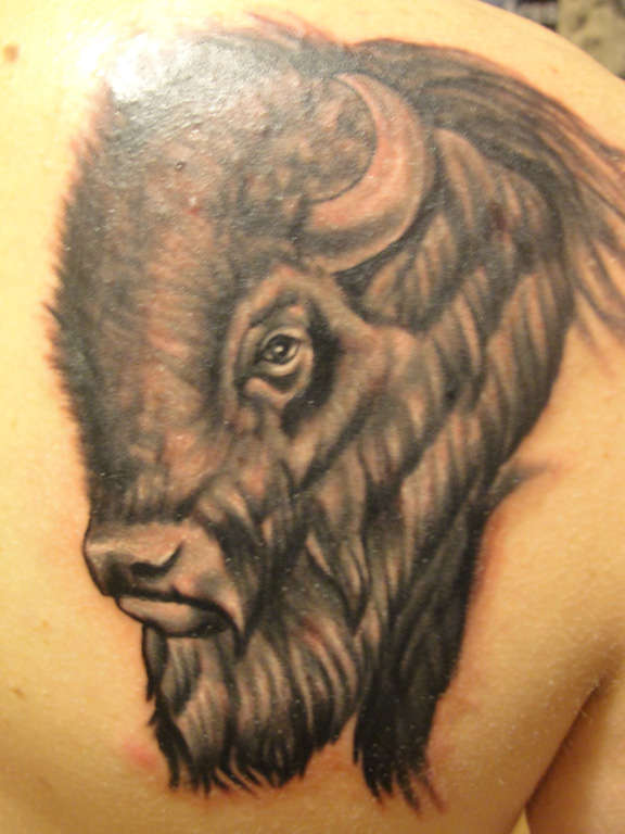 Bison tattoo for Traditional bison tattoo