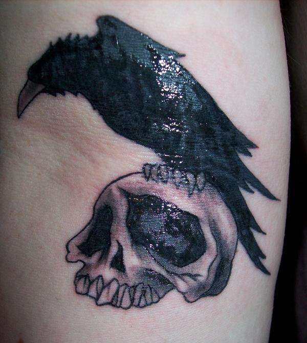 Raven Sitting On A Skull tattoo