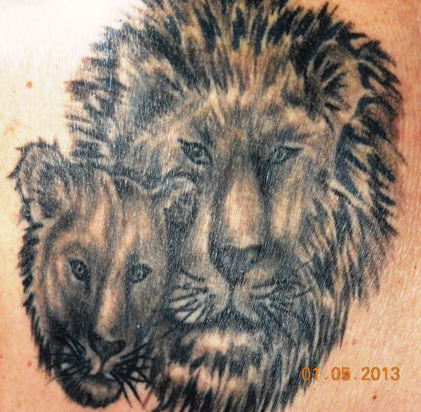 Lion/lioness fix tattoo