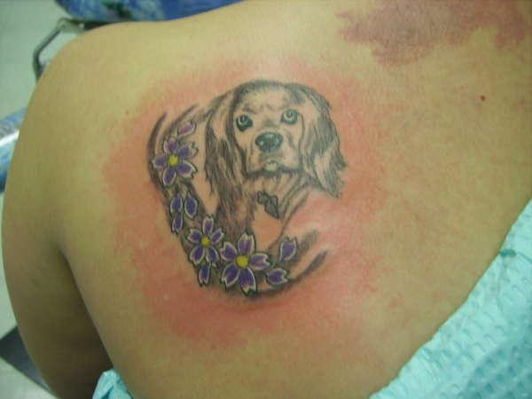 Cocker Spaniel tattoo