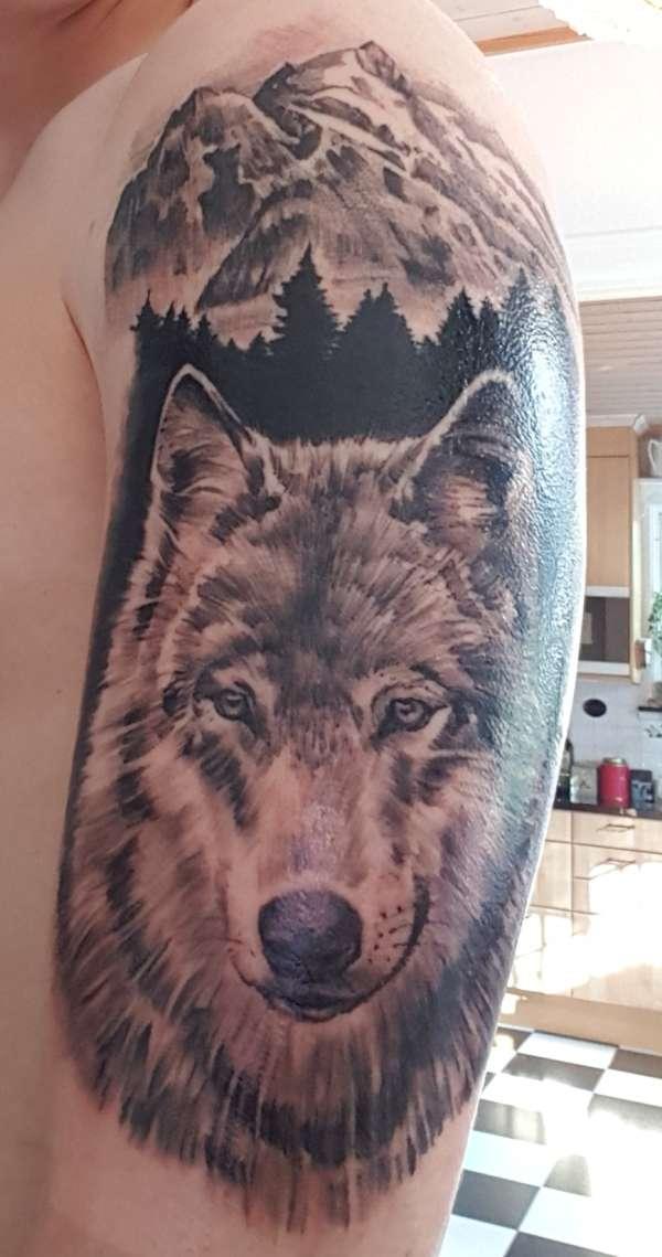 Wolf tattoo tattoo