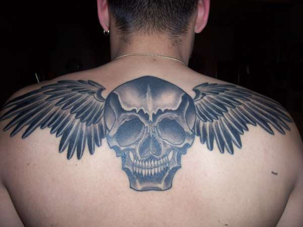 skull and wings! tattoo