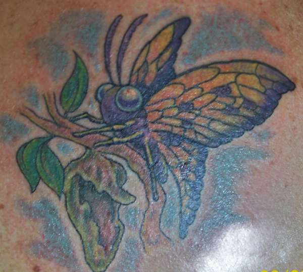 Custom Butterfly tattoo