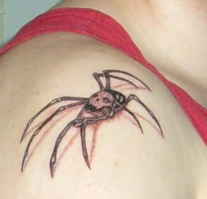 Spider tattoo on my shoulder tattoo