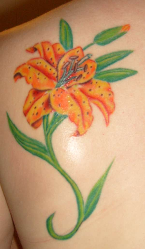 tiger lily tattoo tattoo