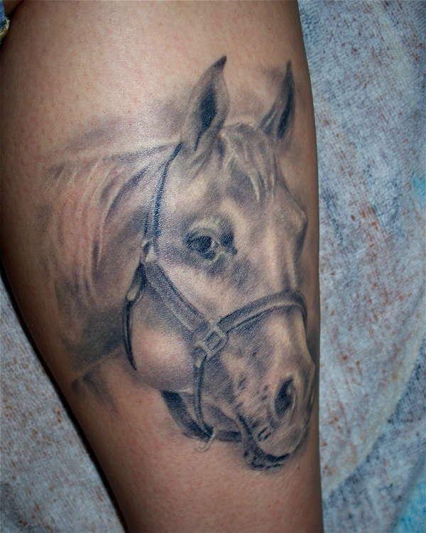 Portrait of my horse tattoo