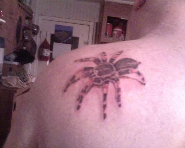 3d tarantula tattoo
