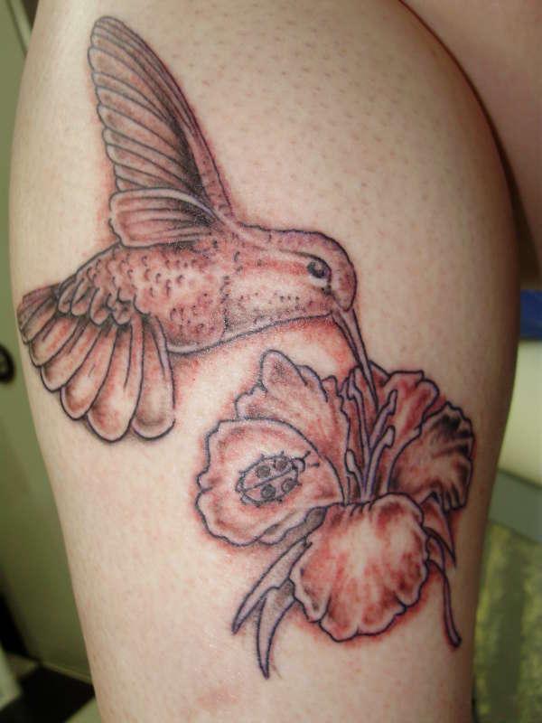 black & gray hummingbird tattoo