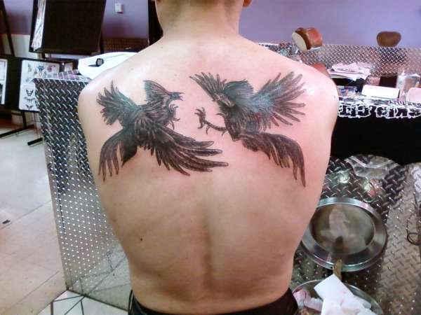 Fighting Chickens tattoo