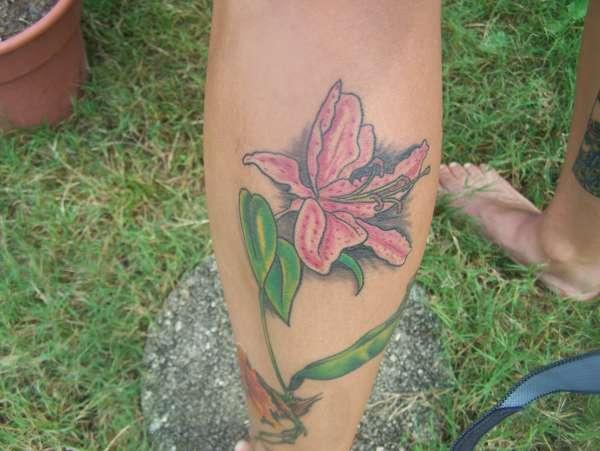 Pink Tiger Lily tattoo