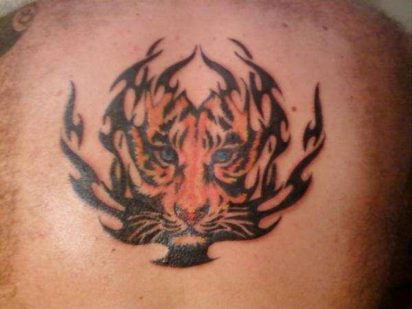 Tiger in tribal tattoo