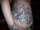 warriorpudding tattoo