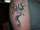 Sander tattoo