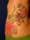 Mellygirl tattoo
