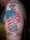 Tim tattoo
