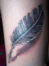 quill pen writer tatt tattoo