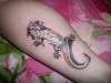 Leopard Gecko tattoo