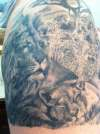 Lions tattoo