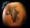 Africa elephant tattoo
