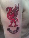 L.F.C Liverbird. tattoo