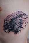 Eagle Tattoo tattoo