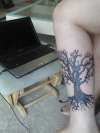 tree of life... tattoo