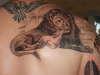 Lion and Lamb tattoo