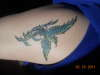 pheonix bird tattoo