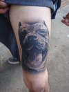 day of the dead pitbull tattoo