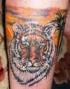 Tiger Pop tattoo