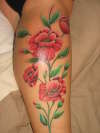poppys tattoo