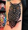 Owl with Celtic knotwork tattoo