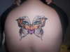 Tiger Butterfly (Angle 2) tattoo