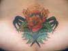 fresh tat i did tattoo
