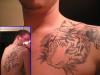 Tiger Complete 2004 tattoo
