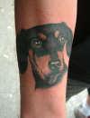 Rob's Hound tattoo