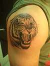 tiger on shoulder... tattoo