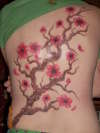 my cherry blossom tree tattoo