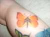Orange Sulfur tattoo