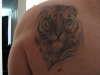Tiger portrait tattoo