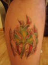 shamrock torn skin tattoo