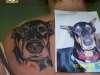 Bromius tattoo